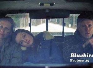 BLUEBIRD is a well-made indie drama about a tragedy in a small town.